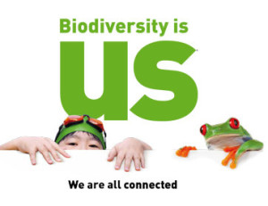 biodiv is us