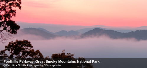 Great Smoky Mountains National Park - the most visited National Park in the US in 2014 http://www.npca.org/parks/great-smoky-mountains.html