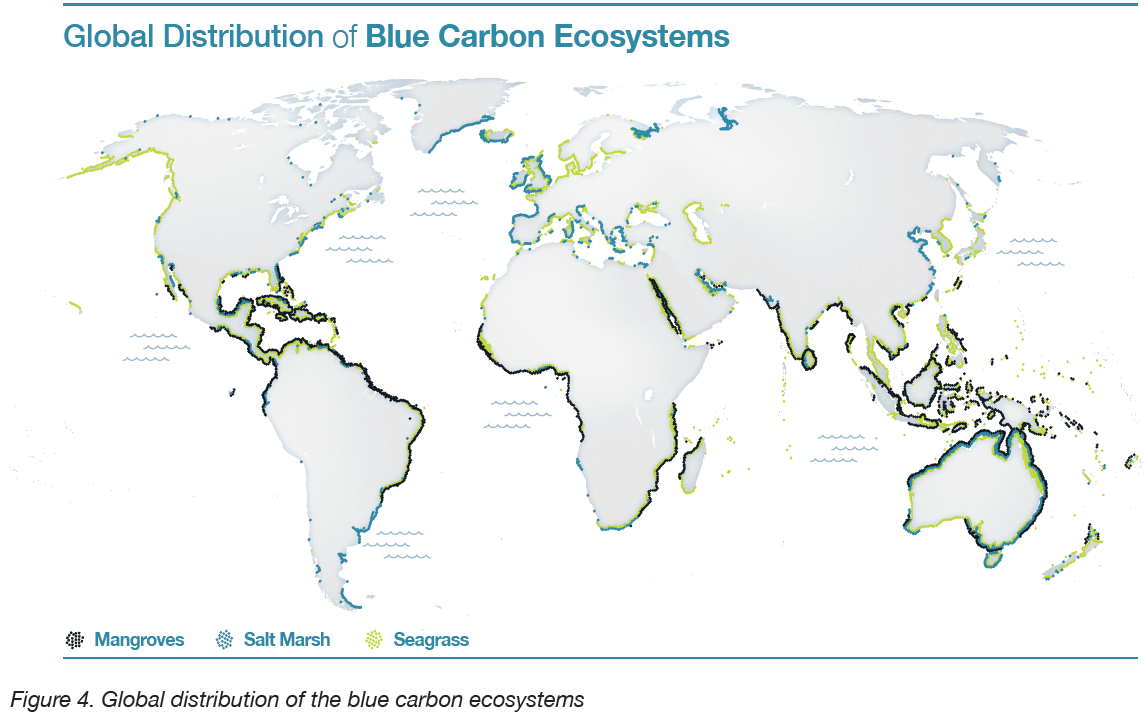 Global distribution of blue carbon. http://thebluecarboninitiative.org/category/about/blue-carbon/